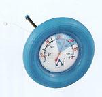 Termometro para piscina 53902